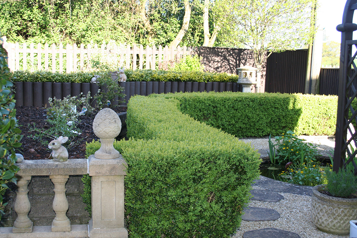 how to stop people trimming hedges